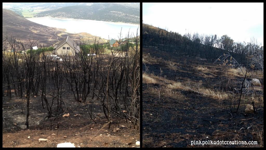 Rockport fire Aug 2013-002