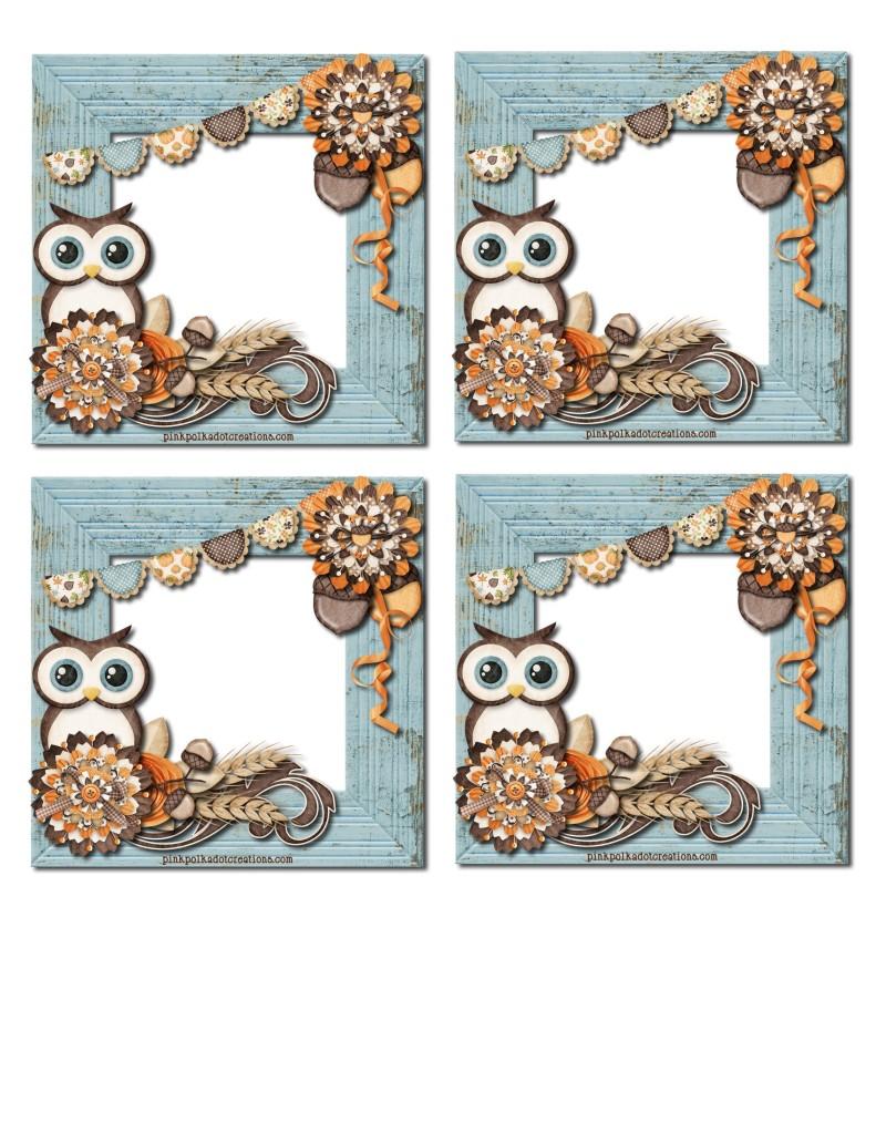 Sept-2013-VT-003-blank-owl-tags