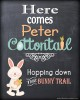Here-comes-Peter-Cottontail-000-Page-1