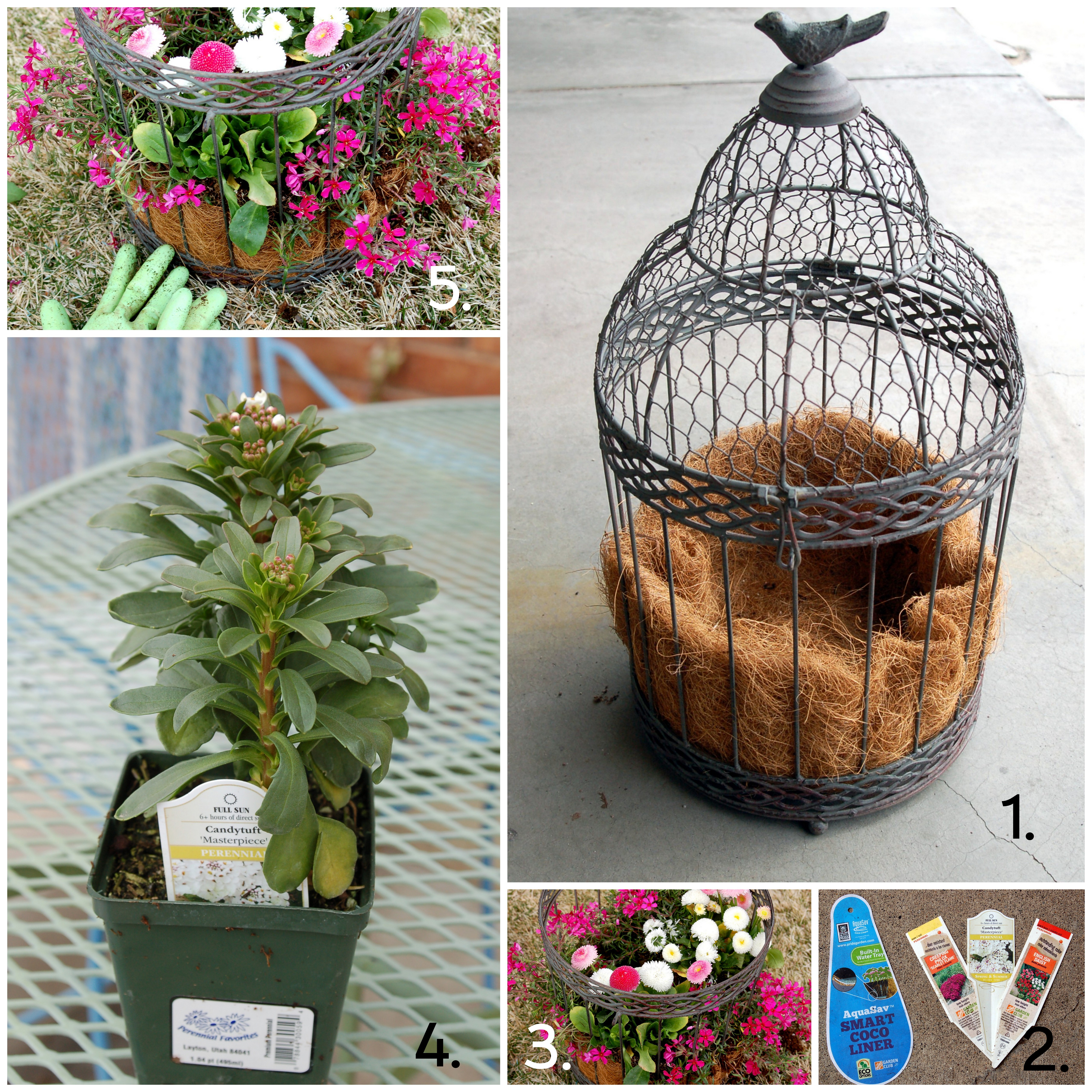 Bird Cage Planter: Pink Polka Dot Creations