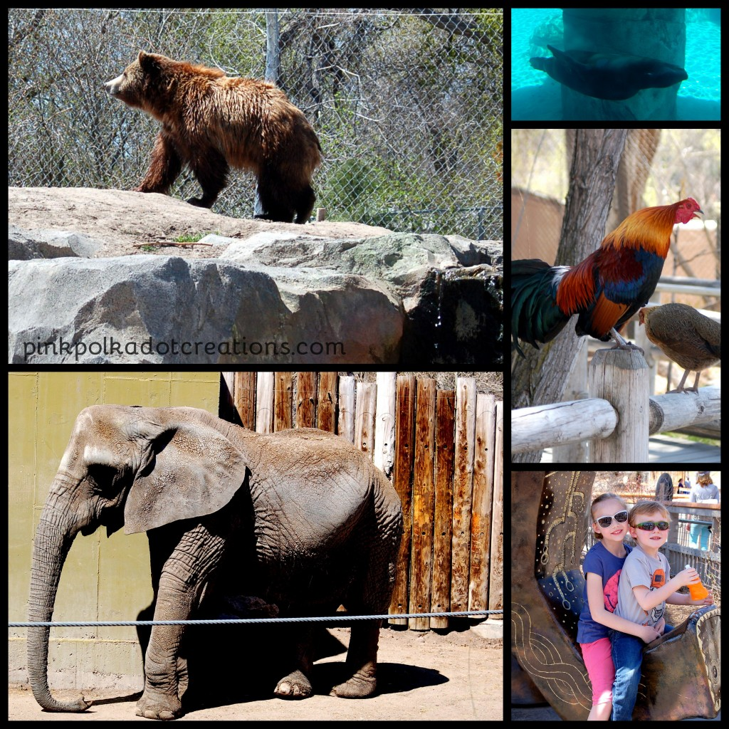 Hogle Zoo-002