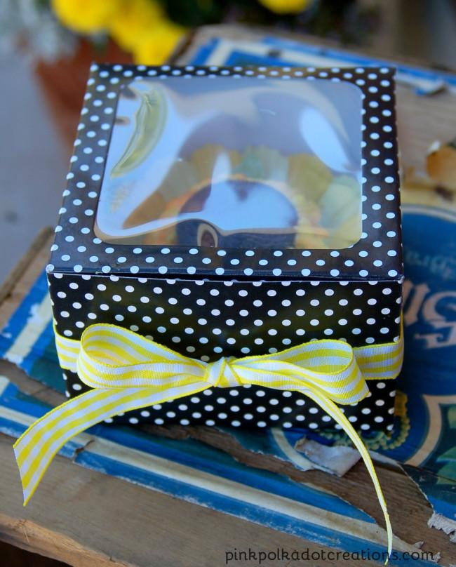 boxed cupcake