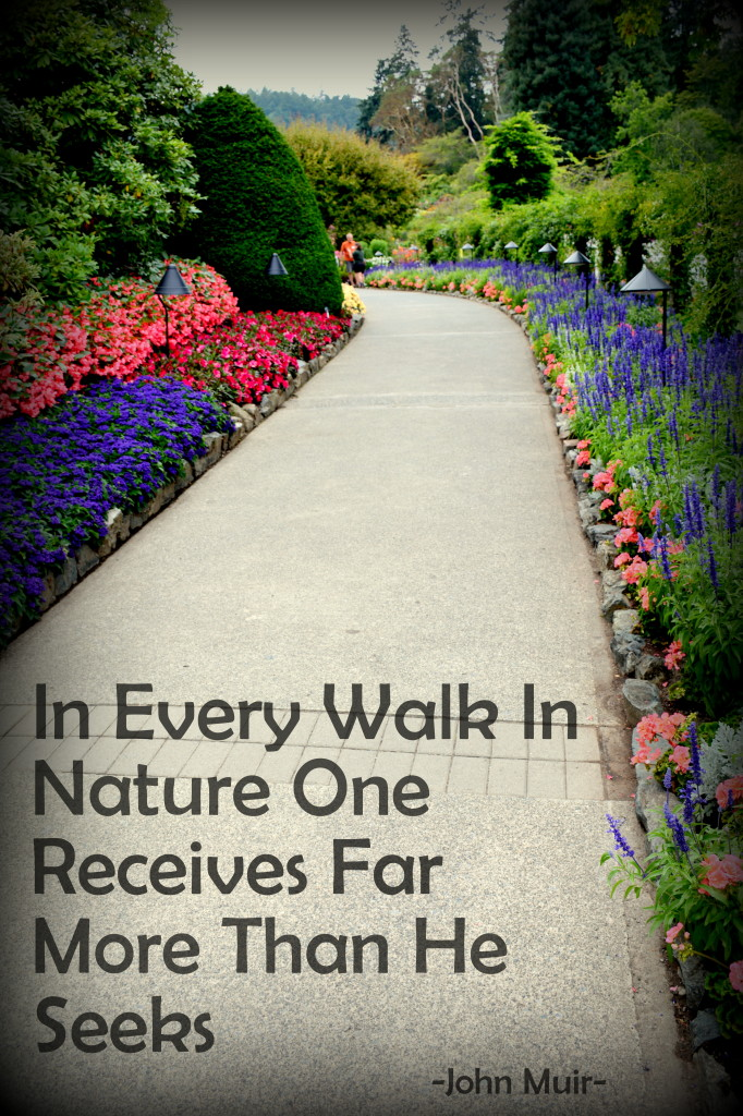 In every walk in Nature
