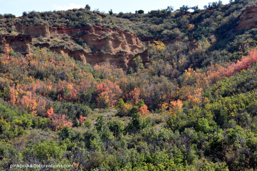 red rocks in autumn