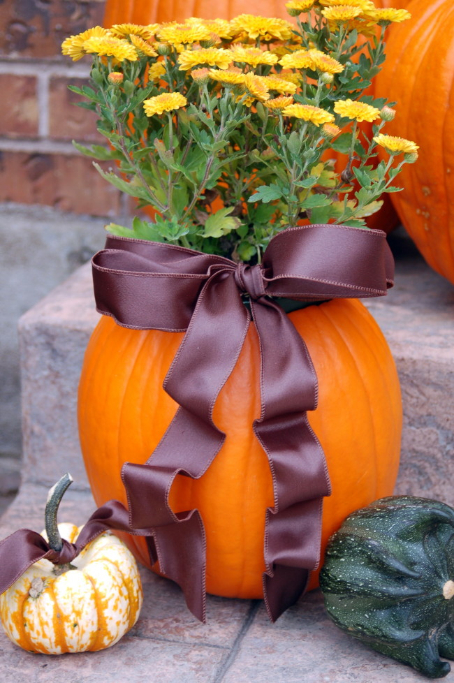 Halloween Planter A Fun And Simple Project To Give Your