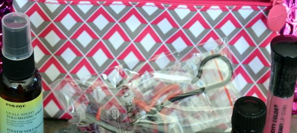 Ipsy bag
