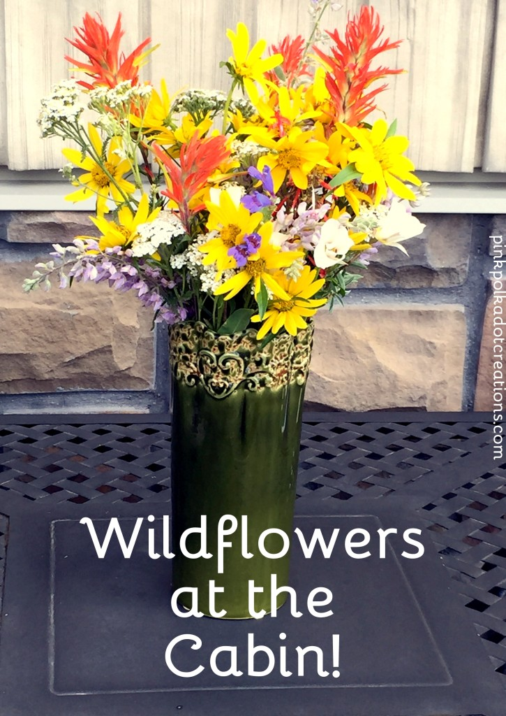 Wildflowers at the cabin