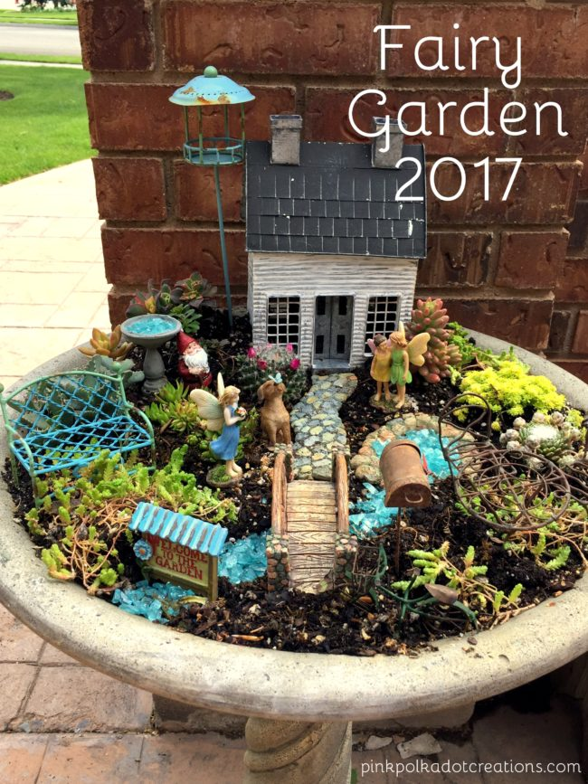 Planting Succulents In Bird Bath