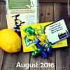 Aug. 2016 Visiting Teaching Handout